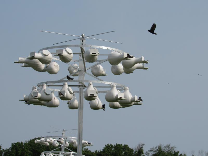 Purple Martin Houses purchased by the Friends of Prime Hook